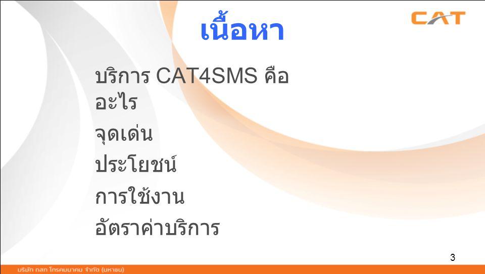 3 เนื้อหา บริการ CAT4SMS คือ อะไร จุดเด่น ประโยชน์ การใช้งาน อัตราค่าบริการ