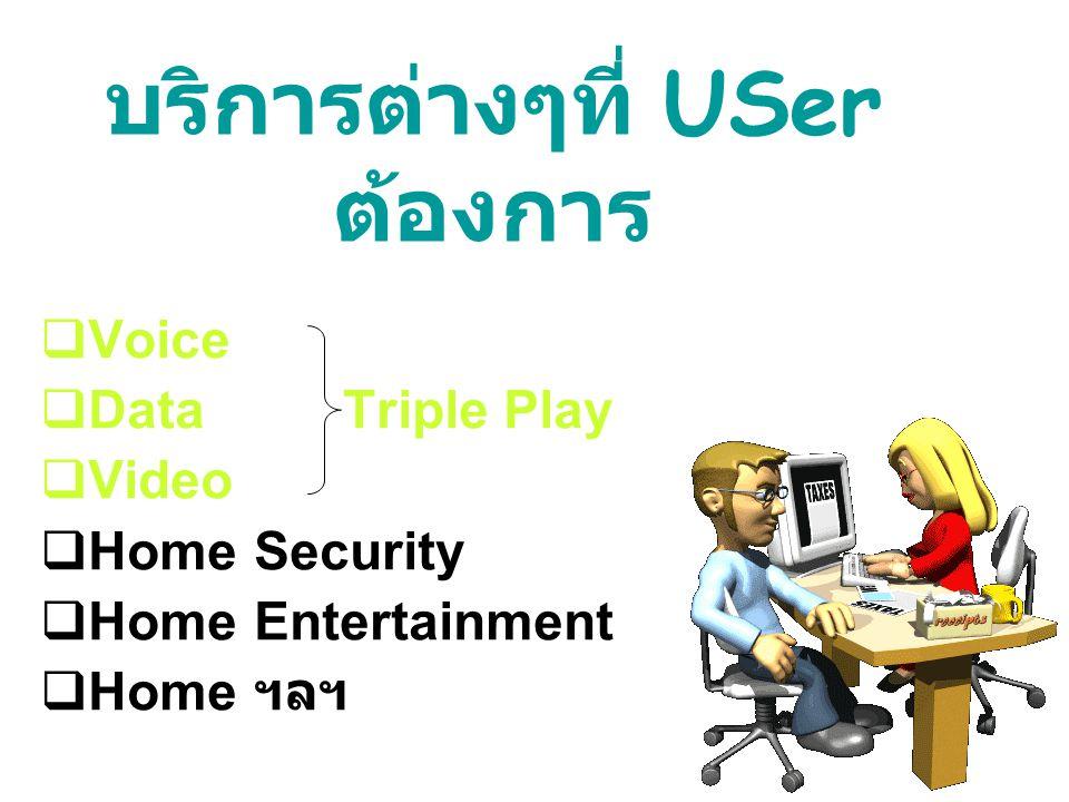  Voice  Data Triple Play  Video  HomeSecurity  HomeEntertainment  Home ฯลฯ บริการต่างๆที่ USer ต้องการ