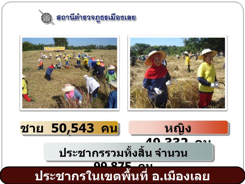 www.themegallery.com 1 2 3 4 หญิง 49,332 คน ชาย 50,543 คน ประชากรรวมทั้งสิ้น จำนวน 99,875 คน ประชากรในเขตพื้นที่ อ.