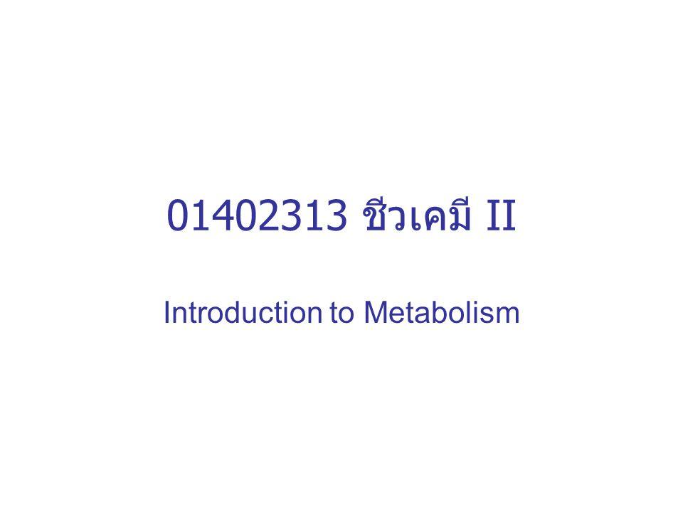 01402313 ชีวเคมี II Introduction to Metabolism
