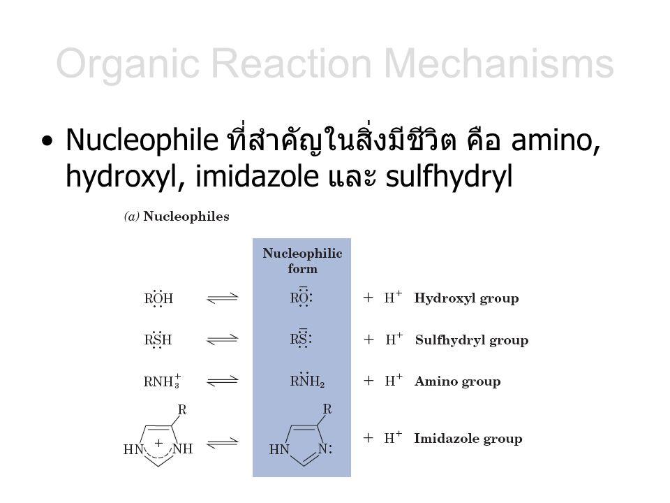 Organic Reaction Mechanisms Nucleophile ที่สำคัญในสิ่งมีชีวิต คือ amino, hydroxyl, imidazole และ sulfhydryl
