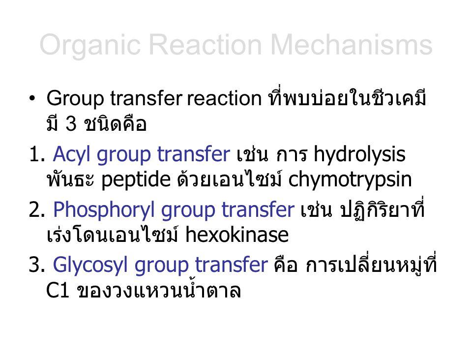 Organic Reaction Mechanisms Group transfer reaction ที่พบบ่อยในชีวเคมี มี 3 ชนิดคือ 1. Acyl group transfer เช่น การ hydrolysis พันธะ peptide ด้วยเอนไซ