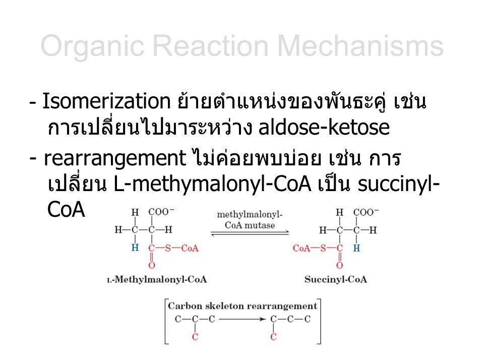 Organic Reaction Mechanisms - Isomerization ย้ายตำแหน่งของพันธะคู่ เช่น การเปลี่ยนไปมาระหว่าง aldose-ketose - rearrangement ไม่ค่อยพบบ่อย เช่น การ เปลี่ยน L-methymalonyl-CoA เป็น succinyl- CoA