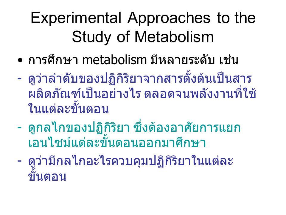 Experimental Approaches to the Study of Metabolism การศึกษา metabolism มีหลายระดับ เช่น -ดูว่าลำดับของปฏิกิริยาจากสารตั้งต้นเป็นสาร ผลิตภัณฑ์เป็นอย่างไร ตลอดจนพลังงานที่ใช้ ในแต่ละขั้นตอน -ดูกลไกของปฏิกิริยา ซึ่งต้องอาศัยการแยก เอนไซม์แต่ละขั้นตอนออกมาศึกษา -ดูว่ามีกลไกอะไรควบคุมปฏิกิริยาในแต่ละ ขั้นตอน
