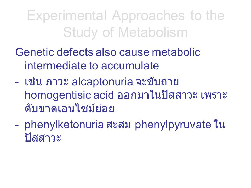 Experimental Approaches to the Study of Metabolism Genetic defects also cause metabolic intermediate to accumulate - เช่น ภาวะ alcaptonuria จะขับถ่าย