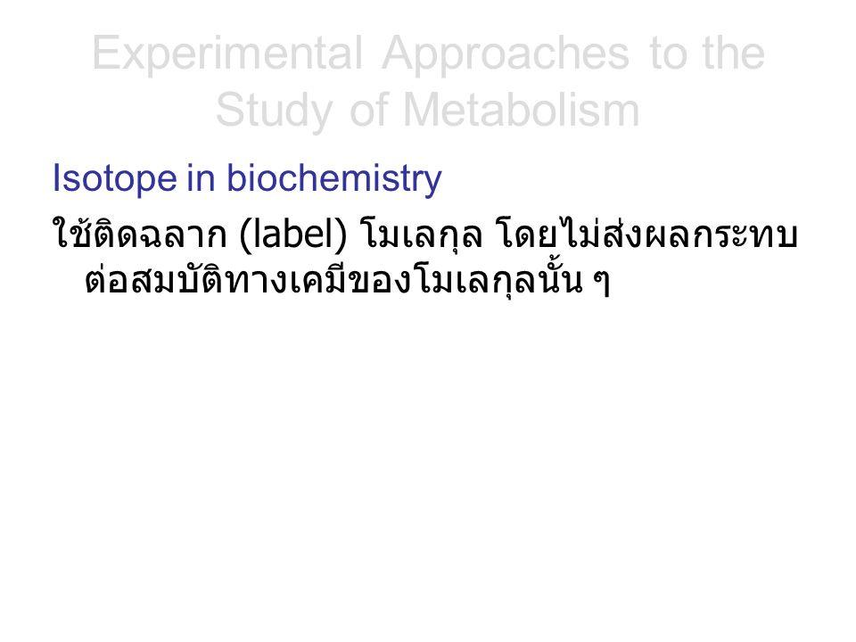 Experimental Approaches to the Study of Metabolism Isotope in biochemistry ใช้ติดฉลาก (label) โมเลกุล โดยไม่ส่งผลกระทบ ต่อสมบัติทางเคมีของโมเลกุลนั้น ๆ
