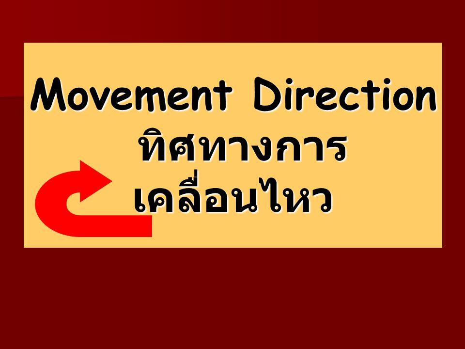 Movement Direction ทิศทางการ เคลื่อนไหว
