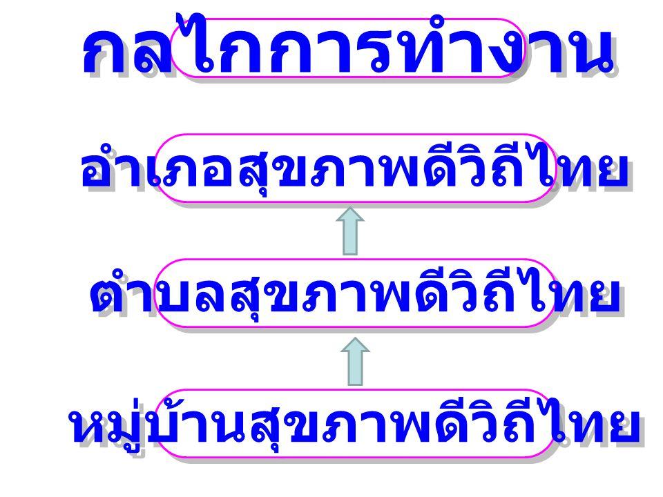 อำเภอสุขภาพดีวิถีไทย กลไกการทำงาน ตำบลสุขภาพดีวิถีไทย หมู่บ้านสุขภาพดีวิถีไทย