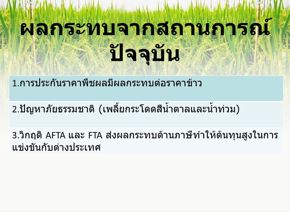 ผลกระทบจากสถานการณ์ ปัจจุบัน 1. การประกันราคาพืชผลมีผลกระทบต่อราคาข้าว 2. ปัญหาภัยธรรมชาติ ( เพลี้ยกระโดดสีน้ำตาลและน้ำท่วม ) 3. วิกฤติ AFTA และ FTA ส