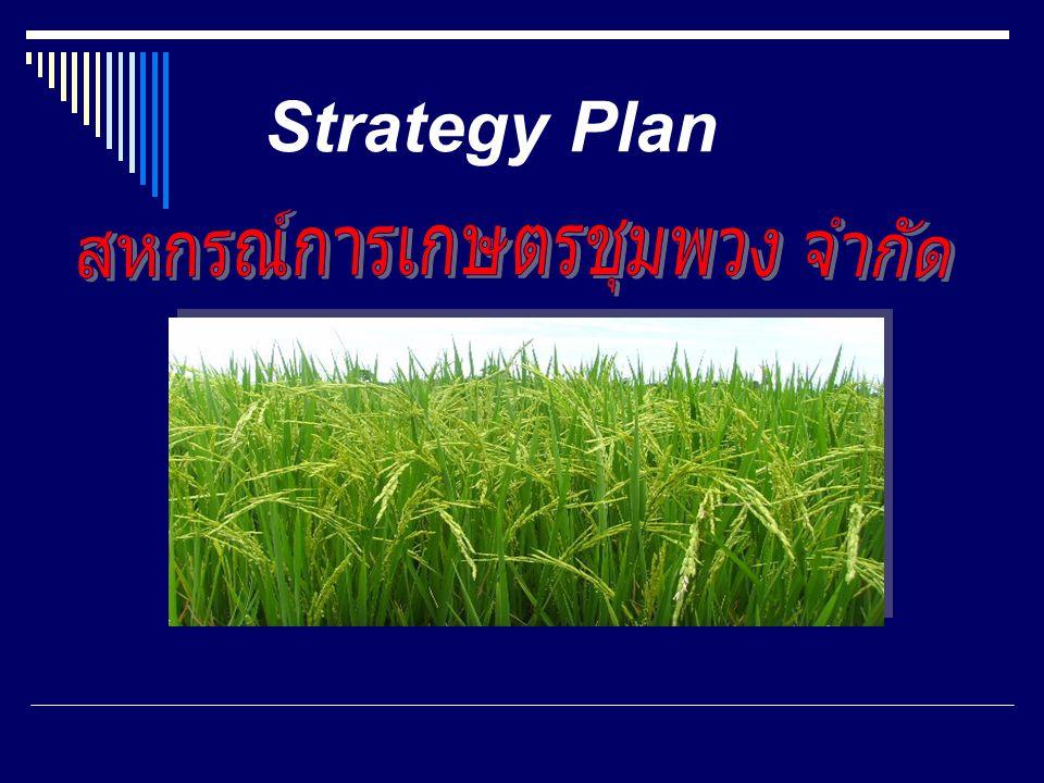 Strategy Plan