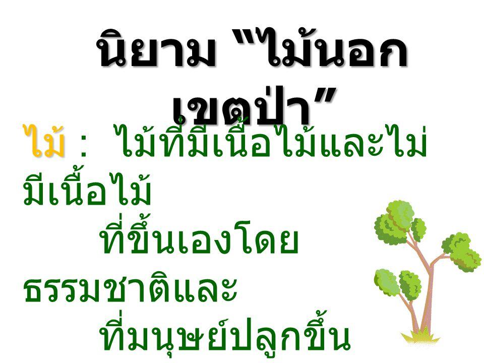 นิยาม ไม้นอก เขตป่า ไม้ ไม้ : ไม้ที่มีเนื้อไม้และไม่ มีเนื้อไม้ ที่ขึ้นเองโดย ธรรมชาติและ ที่มนุษย์ปลูกขึ้น
