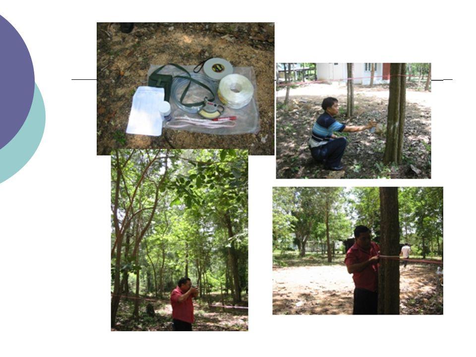 ส่วนวิจัยต้นน้ำ สำนักอนุรักษ์และ จัดการต้นน้ำ