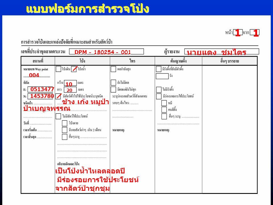 แบบฟอร์มการสำรวจโป่ง 1 1 DPM - 180254 - 001 นายแดง ชมไตร 004 0513477 1453780 ป่าเบญจพรรณ ช้าง เก้ง หมูป่า 20 10 เป็นโป่งน้ำไหลตลอดปี มีร่องรอยการใช้ปร