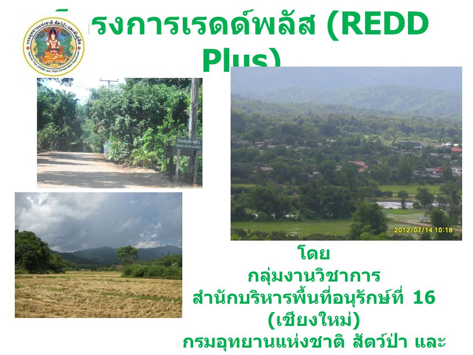 โครงการเรดด์พลัส (REDD Plus) โดย กลุ่มงานวิชาการ สำนักบริหารพื้นที่อนุรักษ์ที่ 16 ( เชียงใหม่ ) กรมอุทยานแห่งชาติ สัตว์ป่า และ พันธุ์พืช ปีงบประมาณ พ.