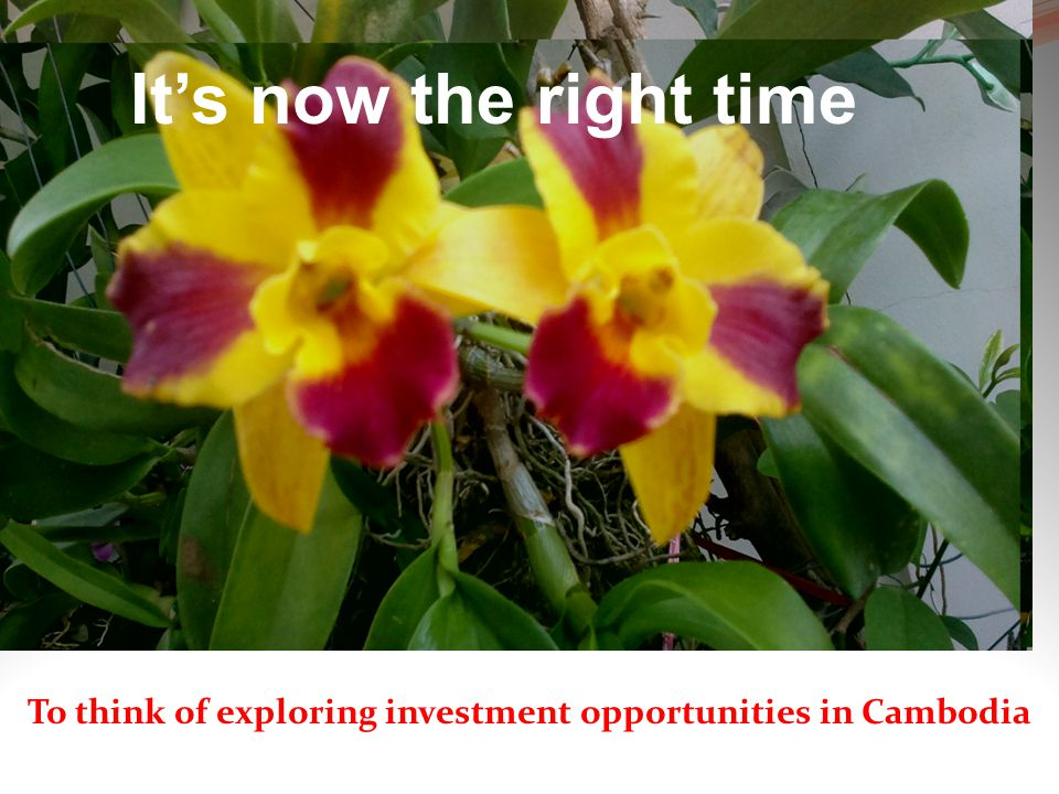 ขะแมร์เลอ ขะแมร์กรอม It's now the right time To think of exploring investment opportunities in Cambodia