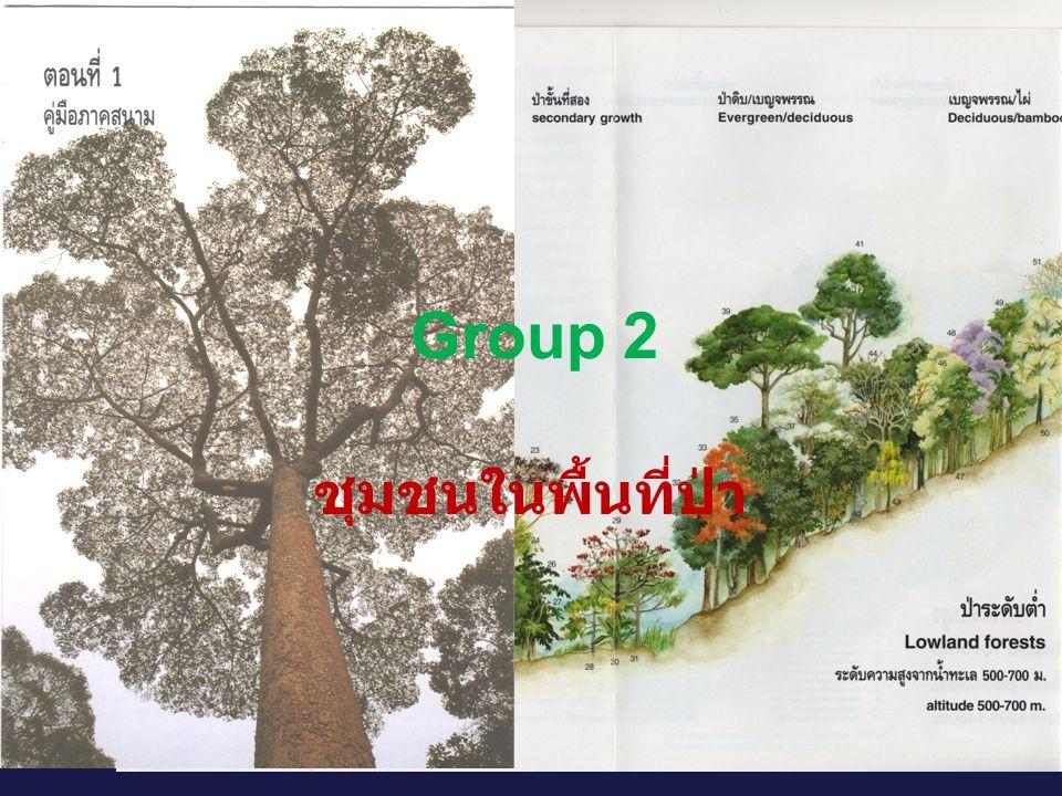 Group 2 ชุมชนในพื้นที่ป่า