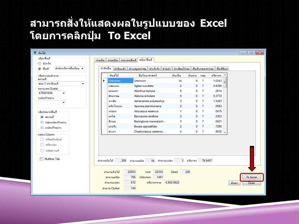สามารถสั่งให้แสดงผลในรูปแบบของ Excel โดยการคลิกปุ่ม To Excel