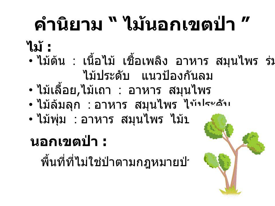 """คำนิยาม """" ไม้นอกเขตป่า """" ไม้ : ไม้ต้น : เนื้อไม้ เชื้อเพลิง อาหาร สมุนไพร ร่มเงา ไม้ประดับ แนวป้องกันลม ไม้เลื้อย, ไม้เถา : อาหาร สมุนไพร ไม้ล้มลุก :"""