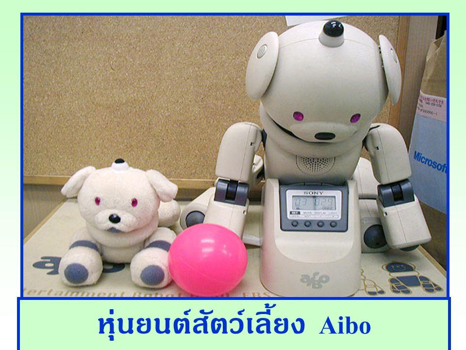 21 หุ่นยนต์สัตว์เลี้ยง Aibo