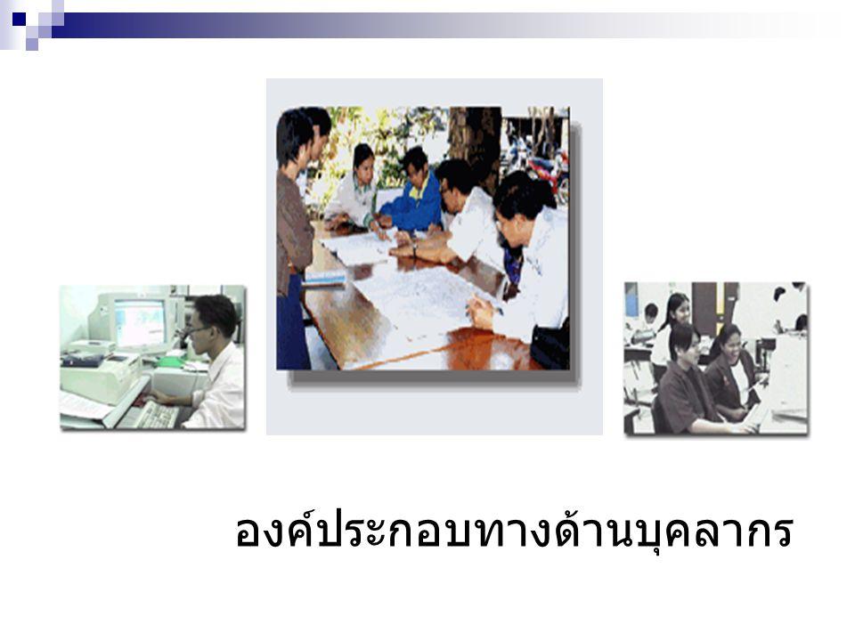 บุคลากรด้านสารสนเทศ บุคลากรที่มีความสามารถทางด้านสารสนเทศที่ ช่วยพัฒนาให้หน่วยงานทำงานอย่างเป็นระบบ โดยอาศัยเทคโนโลยีสารสนเทศช่วยในการ ดำเนินงานขององค์กรจะมีบทบาทที่สำคัญอย่าง มากที่จะทำให้ องค์กรดำเนินงานได้อย่างมี ประสิทธิภาพจะต้องประกอบด้วยบุคลากรดังนี้ เจ้าหน้าที่บันทึกข้อมูล (Data Entry Operator) เจ้าหน้าที่ควบคุมเครื่องคอมพิวเตอร์ (Computer Operator) เจ้าหน้าที่พัฒนาโปรแกรมประยุกต์ (Application Programmer) เจ้าหน้าที่พัฒนาโปรแกรมระบบ (System Programmer) วิศวกรระบบ (System Engineer)
