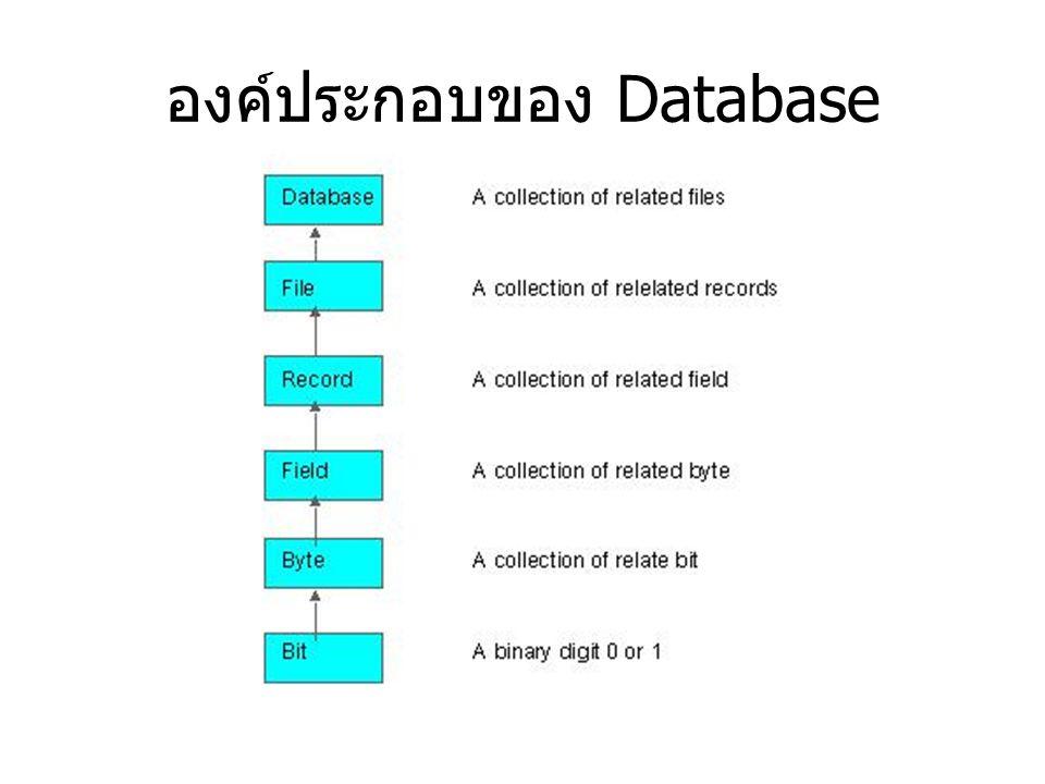 องค์ประกอบของ Database