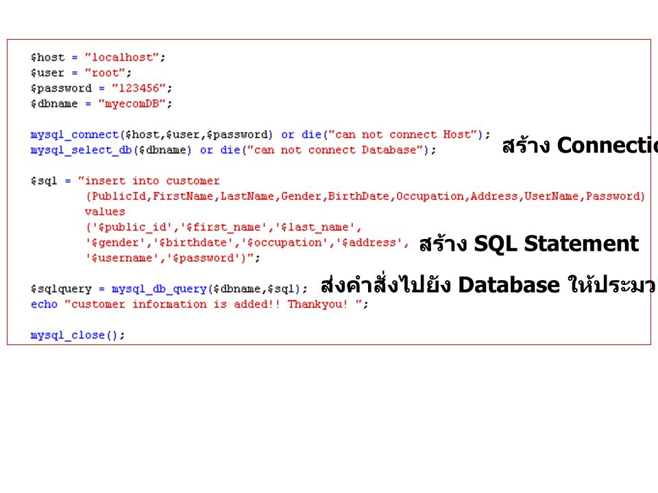 สร้าง Connection สร้าง SQL Statement ส่งคำสั่งไปยัง Database ให้ประมวลผลตามคำสั่ง