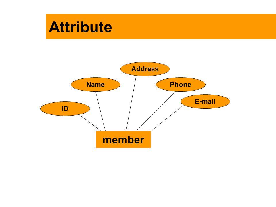 Attribute member ID Name Address Phone E-mail