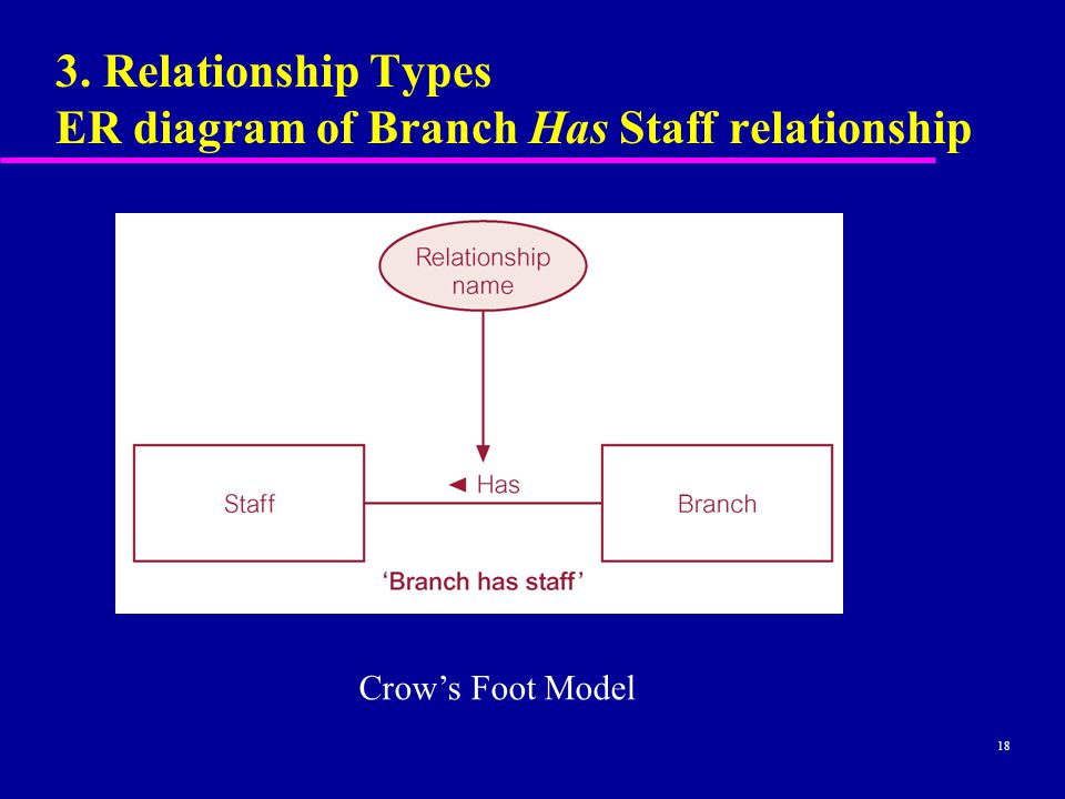 18 3. Relationship Types ER diagram of Branch Has Staff relationship Crow's Foot Model