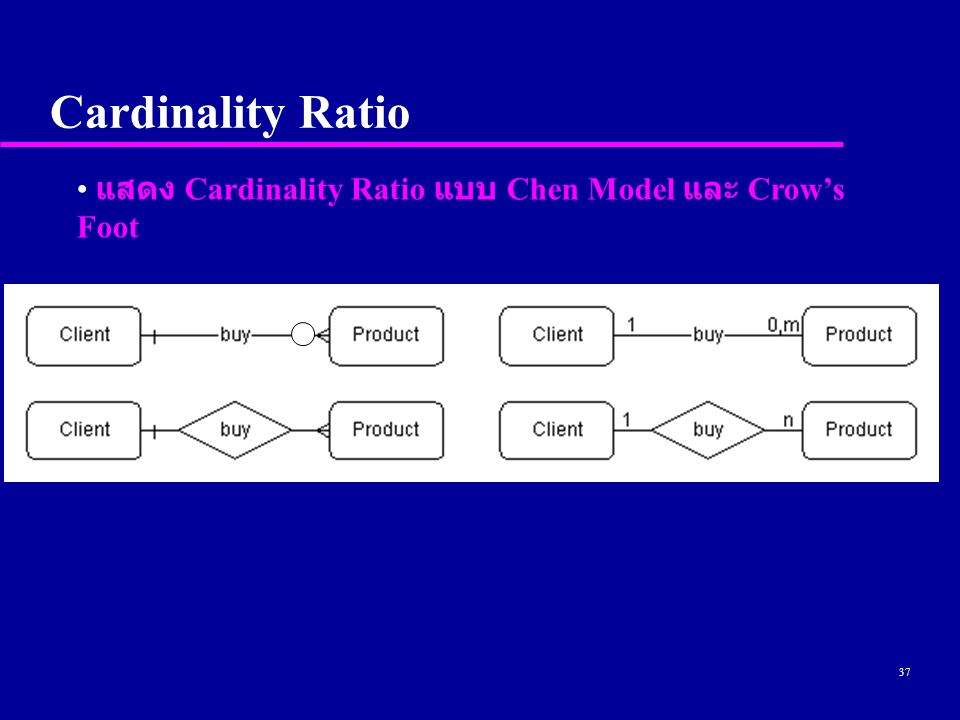 37 Cardinality Ratio แสดง Cardinality Ratio แบบ Chen Model และ Crow's Foot
