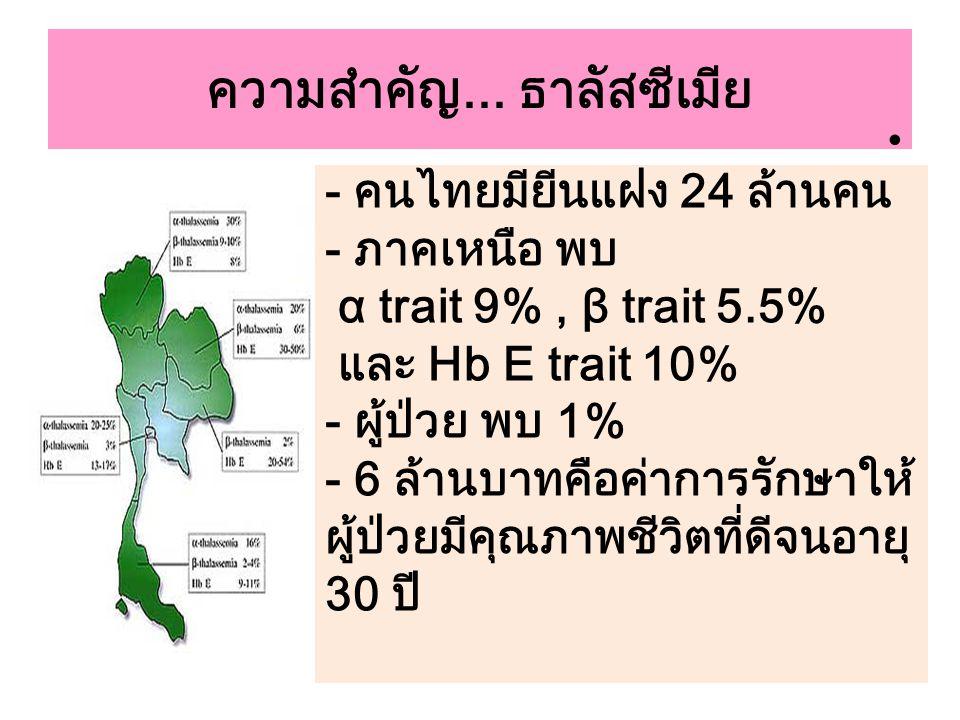 ความสำคัญ... ธาลัสซีเมีย - คนไทยมียีนแฝง 24 ล้านคน - ภาคเหนือ พบ α trait 9%, β trait 5.5% และ Hb E trait 10% - ผู้ป่วย พบ 1% - 6 ล้านบาทคือค่าการรักษา