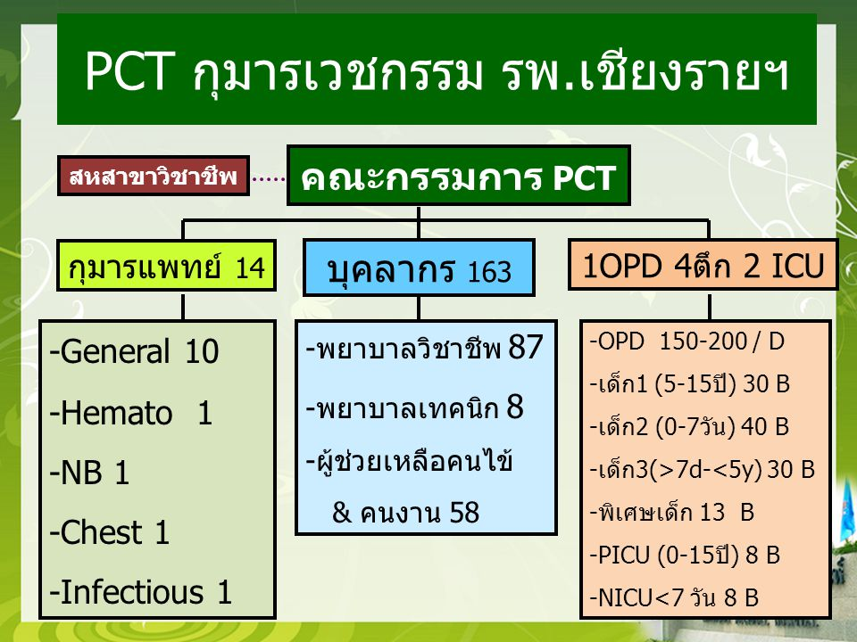 คณะกรรมการ PCT กุมารแพทย์ 14 บุคลากร 163 1OPD 4ตึก 2 ICU -General 10 -Hemato 1 -NB 1 -Chest 1 -Infectious 1 -พยาบาลวิชาชีพ 87 -พยาบาลเทคนิก 8 -ผู้ช่วยเหลือคนไข้ & คนงาน 58 -OPD 150-200 / D -เด็ก1 (5-15ปี) 30 B -เด็ก2 (0-7วัน) 40 B -เด็ก3(>7d-<5y) 30 B -พิเศษเด็ก 13 B -PICU (0-15ปี) 8 B -NICU<7 วัน 8 B สหสาขาวิชาชีพ PCT กุมารเวชกรรม รพ.เชียงรายฯ