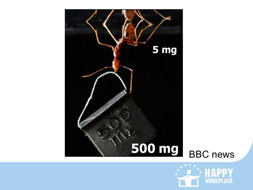 BBC news 500 mg 5 mg