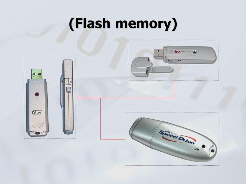 (Flash memory)