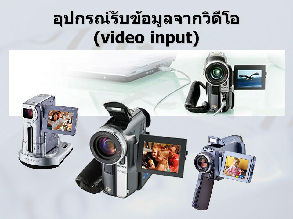 อุปกรณ์รับข้อมูลจากวิดีโอ (video input)