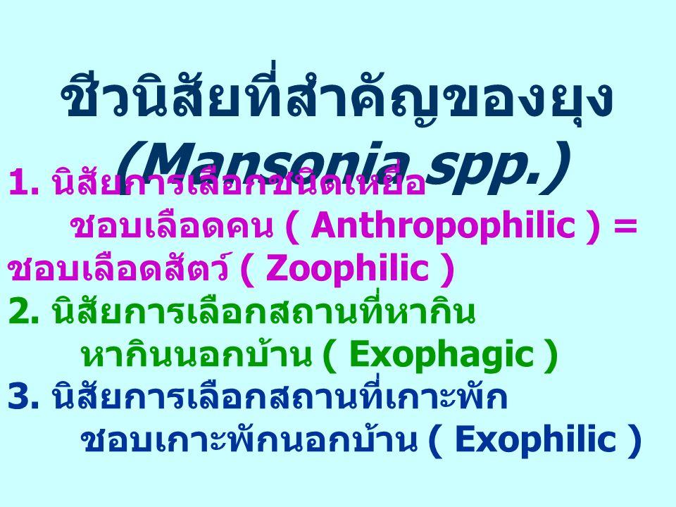 ชีวนิสัยที่สำคัญของยุง (Mansonia spp.) 1. นิสัยการเลือกชนิดเหยื่อ ชอบเลือดคน ( Anthropophilic ) = ชอบเลือดสัตว์ ( Zoophilic ) 2. นิสัยการเลือกสถานที่ห