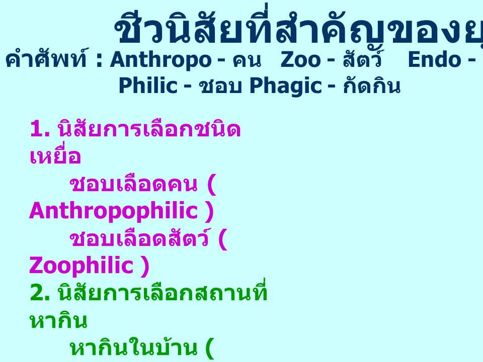 MALARIA VECTORS IN THAILAND 72 species of Anopheline mosquitoes were found in Thailand 10 species are involved in the malaria transmission 1.