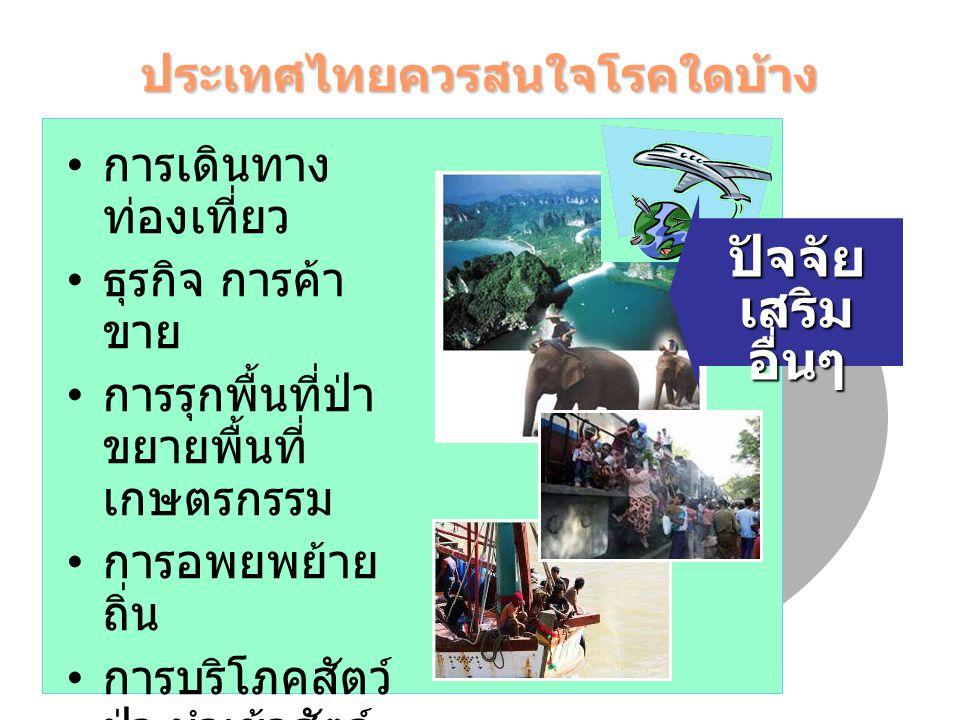 ประเทศไทยควรสนใจโรคใดบ้าง สภาวะเศรษฐกิจ สังคม วัฒนธรรม และสิ่งแวดล้อม โรคติดต่อที่มีอยู่ โรคใดจะเพิ่ม/ลด โรคติดต่ออุบัติใหม่ โรคใดจะเกิด ภาวะ โลก ร้อน
