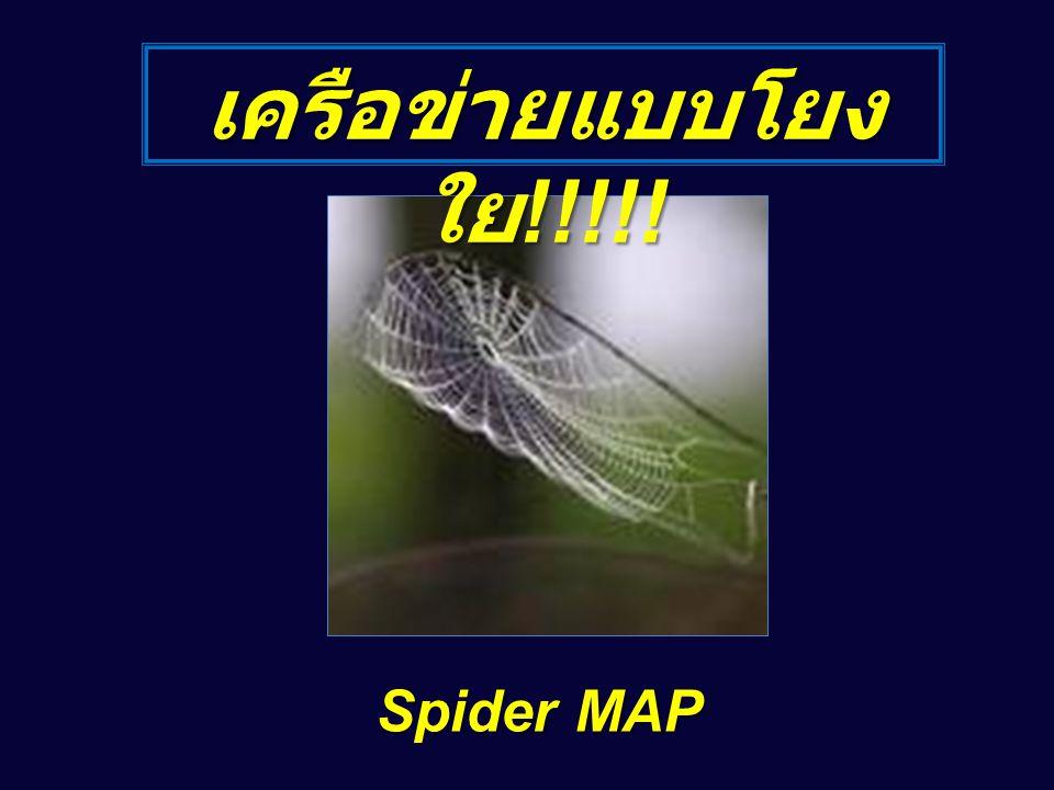 เครือข่ายแบบโยง ใย !!!!! Spider MAP