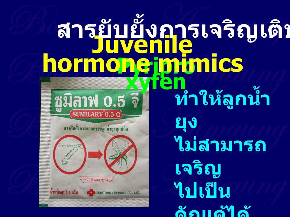 Pyripro xyfen Juvenile hormone mimics สารยับยั้งการเจริญเติบโต ทำให้ลูกน้ำ ยุง ไม่สามารถ เจริญ ไปเป็น ดักแด้ได้