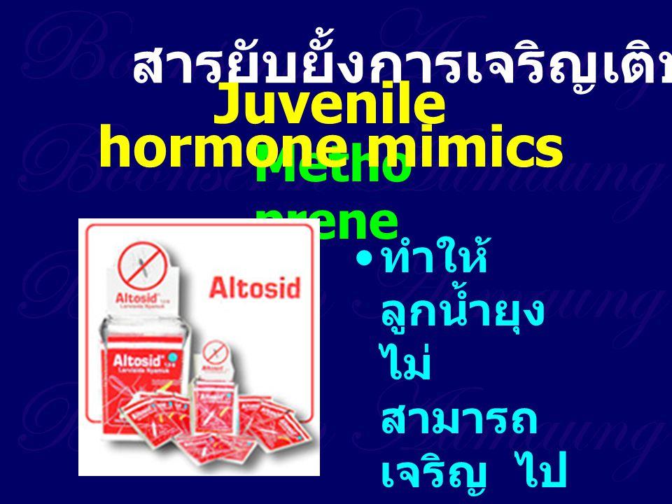 Metho prene สารยับยั้งการเจริญเติบโต ทำให้ ลูกน้ำยุง ไม่ สามารถ เจริญ ไป เป็นดักแด้ หรือตัว เต็มวัยได้ Juvenile hormone mimics