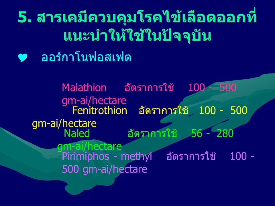 5. สารเคมีควบคุมโรคไข้เลือดออกที่ แนะนำให้ใช้ในปัจจุบัน  ออร์กาโนฟอสเฟต Malathion อัตราการใช้ 100 - 500 gm-ai/hectare Fenitrothion อัตราการใช้ 100 -