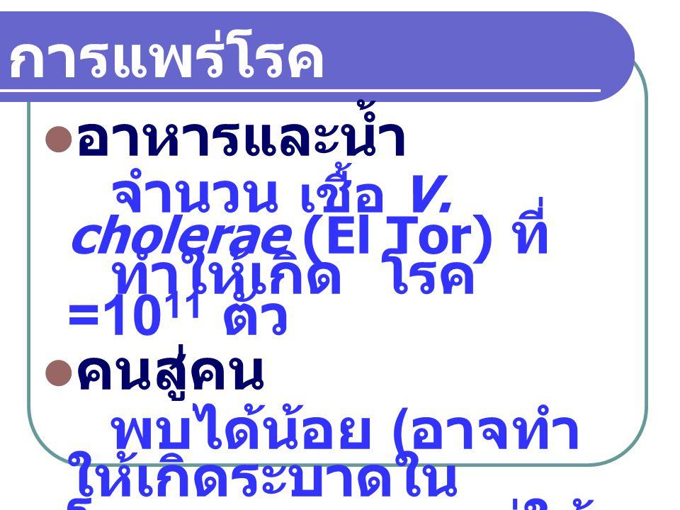 อุจจาระผู้ป่วย 1 cc.มีเชื้อ V. cholerae 10 9 ตัว อุจจาระพาหะ 1 cc.