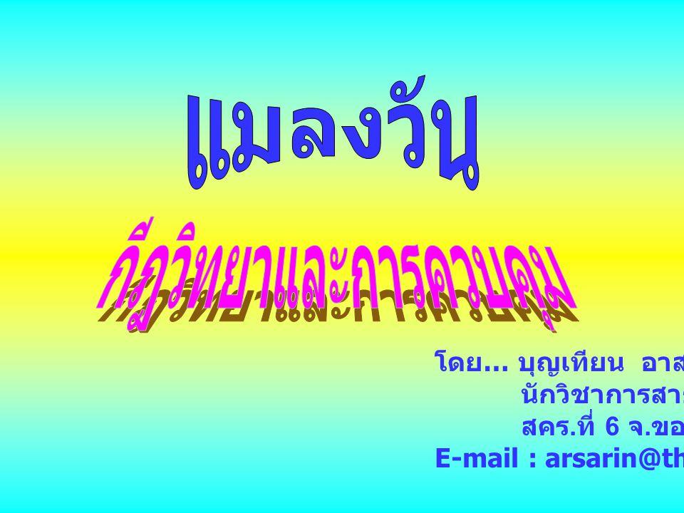 โดย … บุญเทียน อาสารินทร์ นักวิชาการสาธารณสุข 7 ว สคร. ที่ 6 จ. ขอนแก่น E-mail : arsarin@thaimail.com