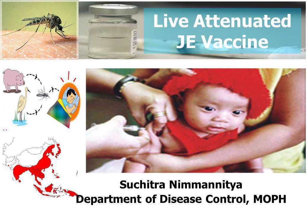 Live Attenuated JE Vaccines กลุ่มเป้าหมาย 1.กลุ่มเด็กเกิด ตั้งแต่ วันที่ 1 กรกฎาคม 2554 2.กลุ่มเด็กเกิด ก่อน วันที่ 1 กรกฎาคม 2554