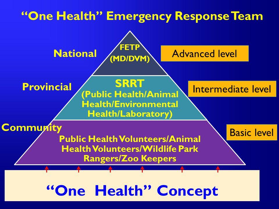 """One Health"" Emergency Response Team ""One Health"" Concept Advanced level Intermediate level Basic level National Provincial Community"