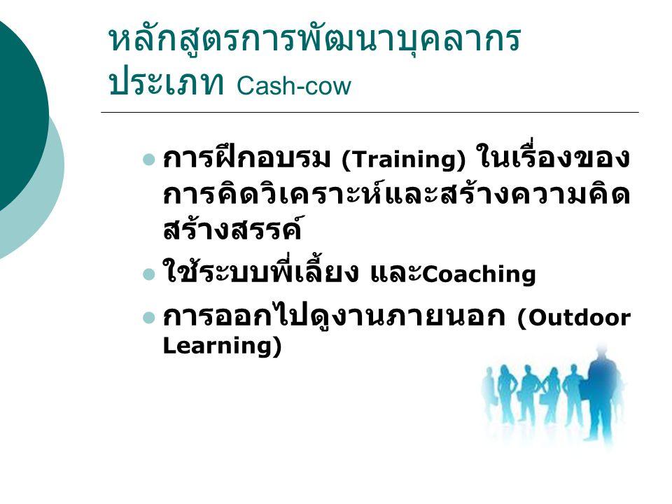 หลักสูตรการพัฒนาบุคลากร ประเภท Cash-cow การฝึกอบรม (Training) ในเรื่องของ การคิดวิเคราะห์และสร้างความคิด สร้างสรรค์ ใช้ระบบพี่เลี้ยง และ Coaching การอ