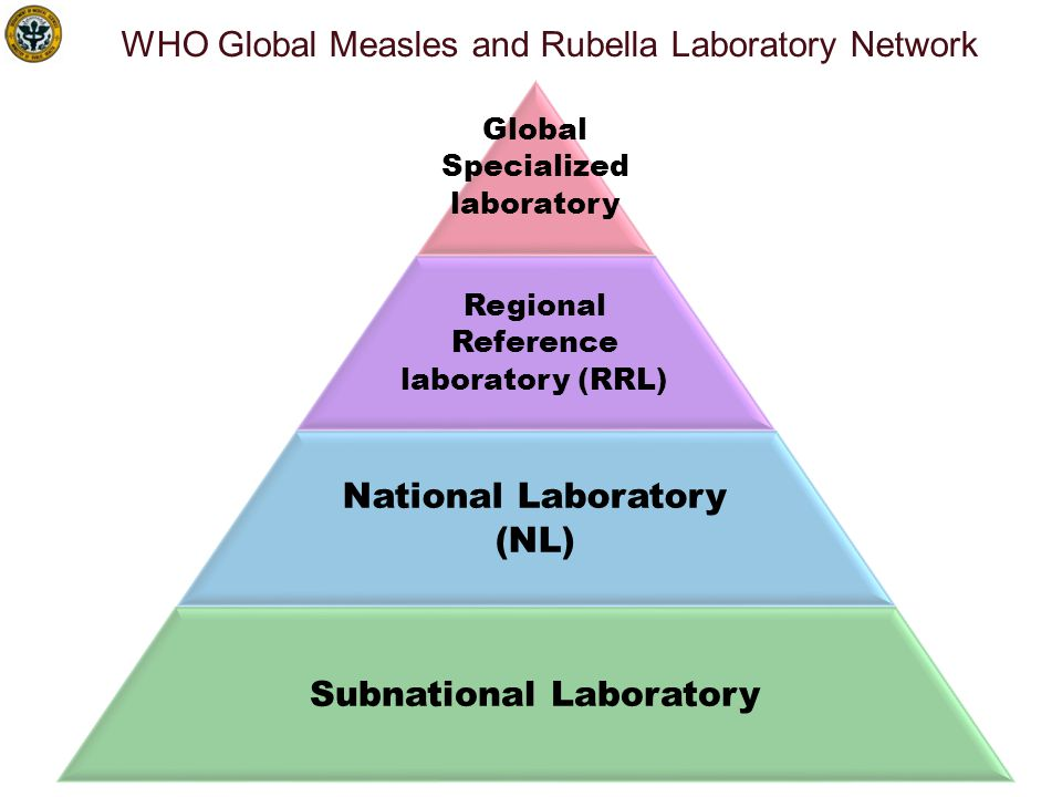 WHO Global Measles and Rubella Laboratory Network: 2012 159 countries = Global Specialised Labs National Laboratories Regional Reference Labs 172 N= 690 labs + 331 Prefect.