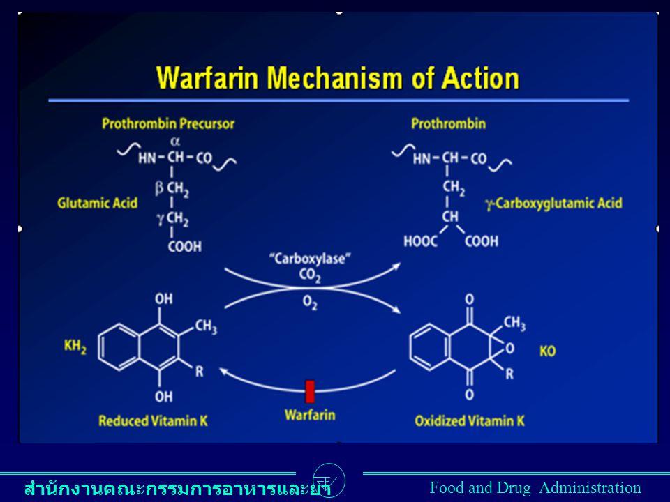 สำนักงานคณะกรรมการอาหารและยา Food and Drug Administration WARFARIN: MECHANISM OF ACTION Inactive factors II, VII, IX, and X Proteins S and C Active factors II, VII, IX, and X Proteins S and C Vitamin K epoxide Vitamin K reduced WARFARIN