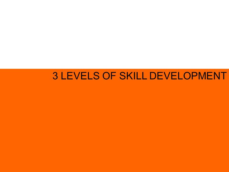 3 LEVELS OF SKILL DEVELOPMENT