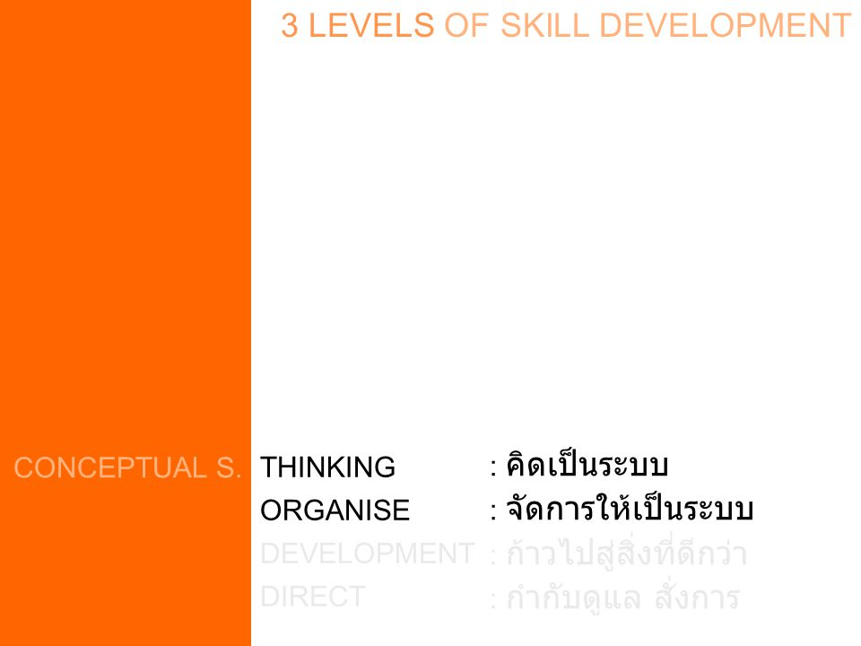 3 LEVELS OF SKILL DEVELOPMENT CONCEPTUAL S. THINKING ORGANISE DEVELOPMENT DIRECT : คิดเป็นระบบ : จัดการให้เป็นระบบ : ก้าวไปสู่สิ่งที่ดีกว่า : กำกับดูแ